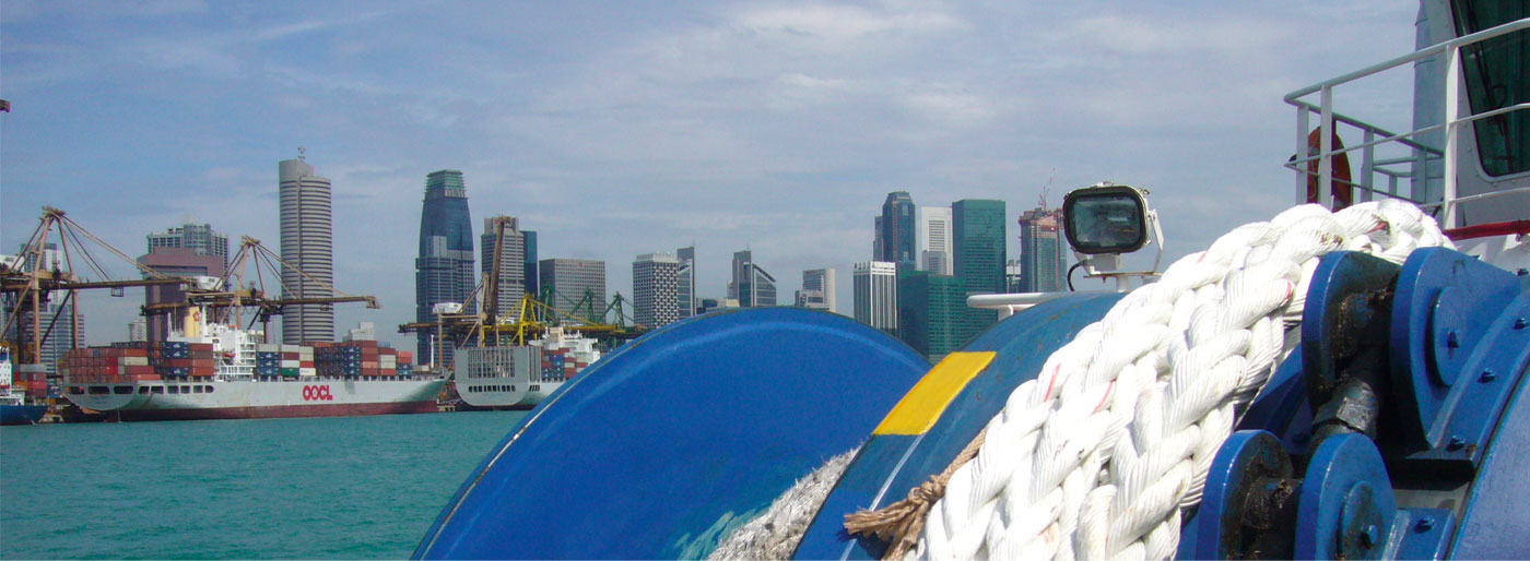 Teho Rope - Mooring Equipment Guidelines (MEG4) | Singapore